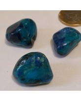 Chrysocolle extra