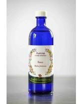 Hydrolat de Ronce (Rubus fruticosus) - eau florale
