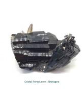 Tourmaline noire cristalisée & inclusions de Quartz fumé - Pièce de Collection