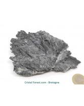 Cyanite (Kyanite / Disthène) Noire