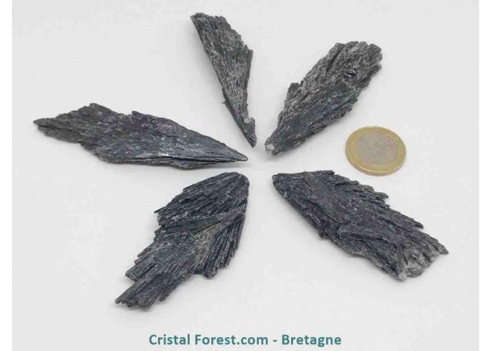 Cyanite (Kyanite / Disthène) Noire - Pierre brute -  Petit Modèle - H. 4.5 à 9.5 x Larg. 1.5 à 1.8 cm / 10 à 23gr