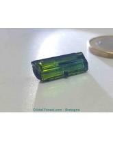 Tourmaline bicolore bleue verte - pierres brutes gemme extra