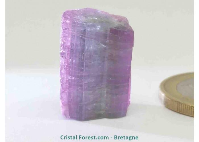 Tourmaline Melon d'eau Rose / Verte  - Pierre Brute Gemme cristallisée - 1,9 x 1,4 x 1,2 cm / 5,33 gr