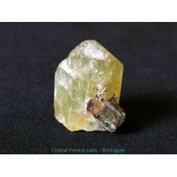 Apatite verte - Cristal brut et gemme