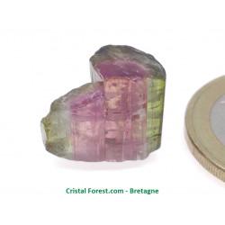 Tourmaline melon d'eau - Pierre Brute Gemme
