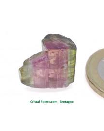 Tourmaline melon d'eau - Cristaux naturels Bruts & Gemmes