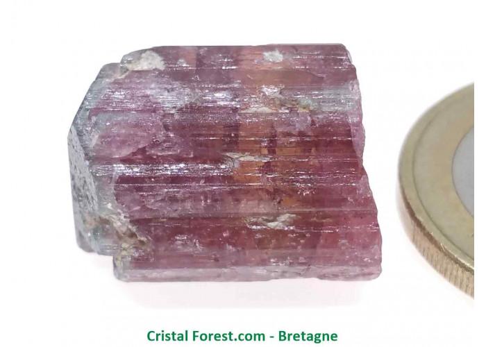 Tourmaline Melon d'eau Rose / Verte  - Pierre Brute Gemme cristallisée - 1,8 x 1,4 x 1,1cm / 5,45gr
