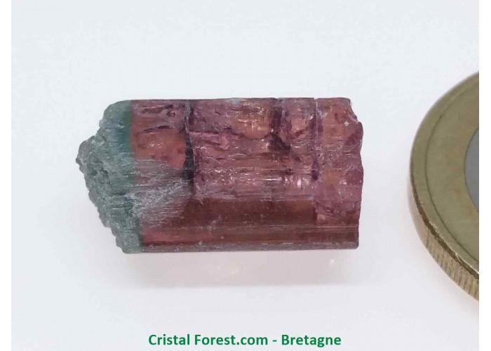 Tourmaline Melon d'eau Rose / Verte  - Pierre Brute Gemme cristallisée - 1,7 x 1 x 0,8cm / 2,93gr