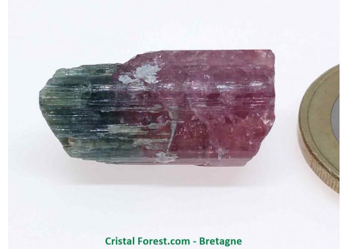 Tourmaline Melon d'eau Rose / Verte  - Pierre Brute Gemme cristallisée