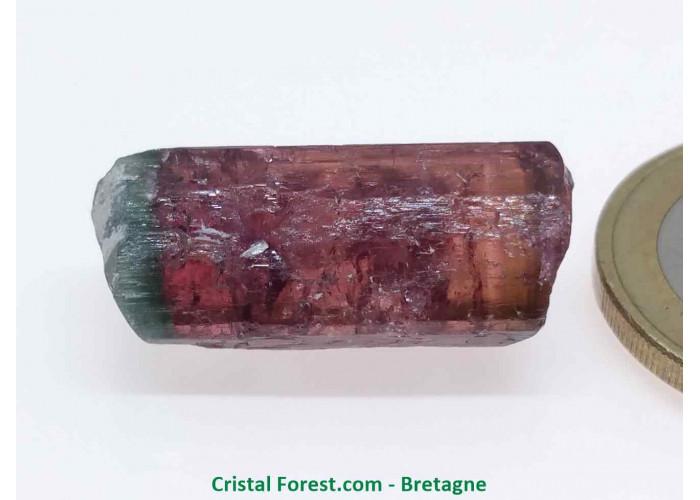 Tourmaline Melon d'eau Rose / Verte  - Pierre Brute Gemme cristallisée - 2,5 x 1 x 1cm / 5,02gr