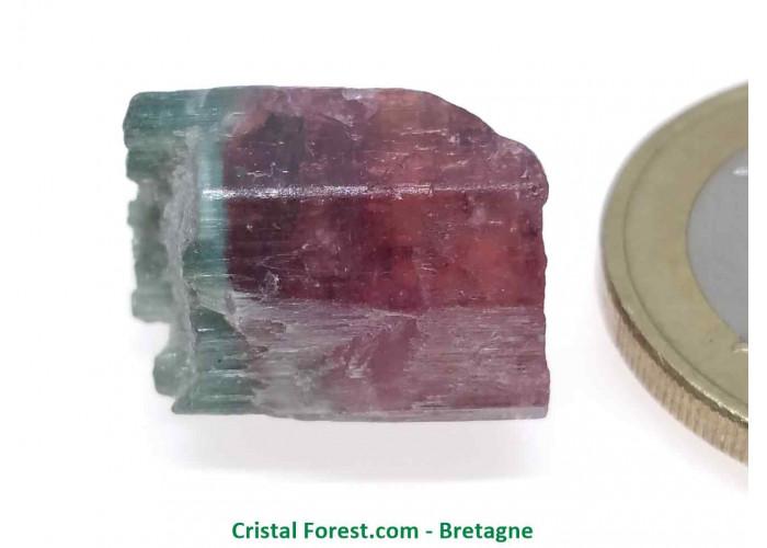 Tourmaline Melon d'eau Rose / Verte  - Pierre Brute Gemme cristallisée - 1,4 x 1,2 x 1,2cm / 3,99gr