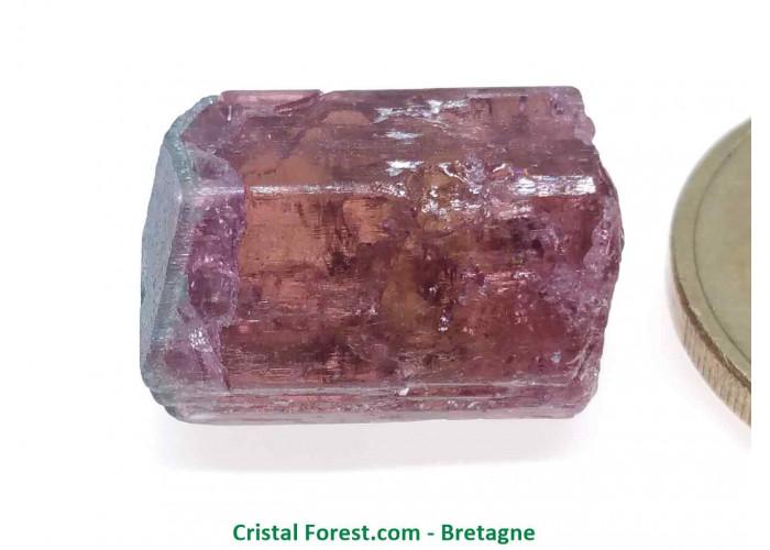 Tourmaline Melon d'eau Rose / Verte  - Pierre Brute Gemme cristallisée - 1,8 x 1,2 x 0,9cm / 4,56gr