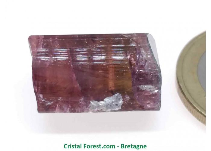 Tourmaline Melon d'eau Rose / Verte  - Pierre Brute Gemme cristallisée - 1,8 x 1,3 x 1,1cm / 6,08gr