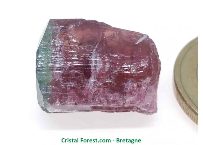 Tourmaline Melon d'eau Rose / Verte  - Pierre Brute Gemme cristallisée - 1,7 x 1,3 x 1,1cm / 4,89gr