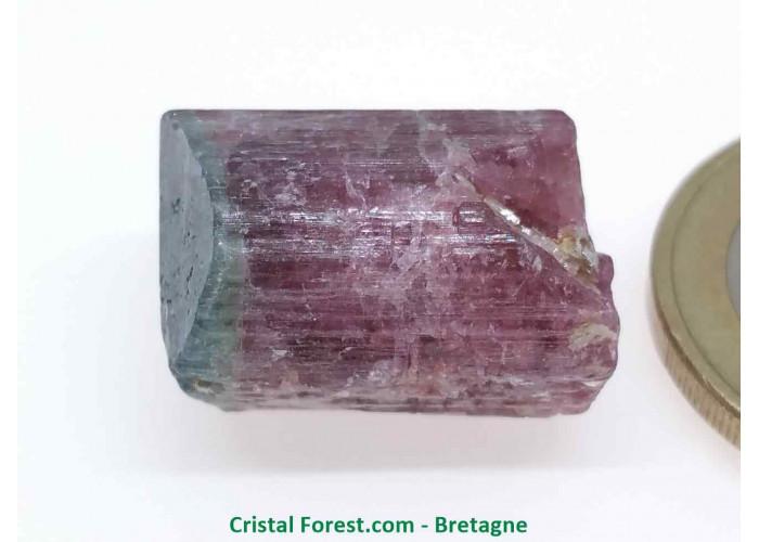 Tourmaline Melon d'eau Rose / Verte  - Pierre Brute Gemme cristallisée - 1,9 x 1,4 x 1,3cm / 6,89gr