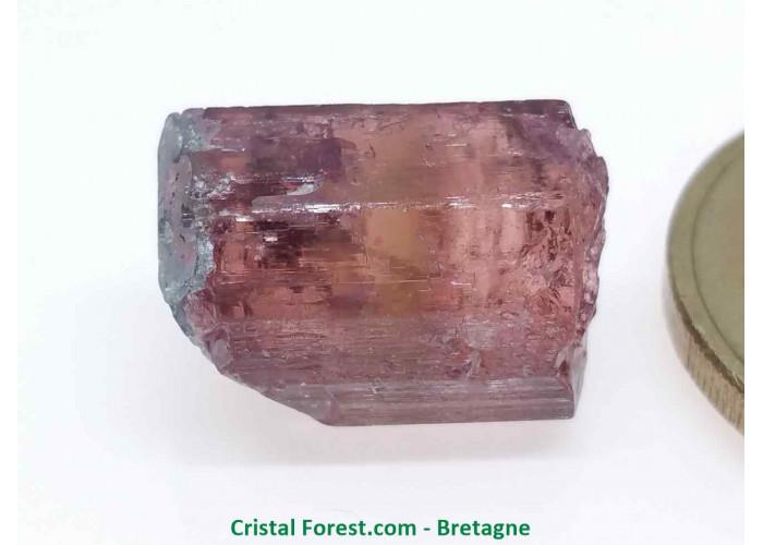Tourmaline Melon d'eau Rose / Verte  - Pierre Brute Gemme cristallisée - 1,6 x 1,1 x 0,9cm / 3,18gr