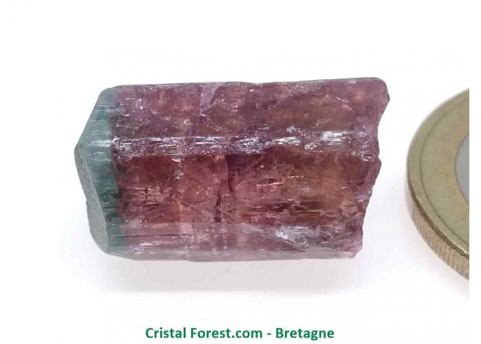 Tourmaline Melon d'eau Rose / Verte  - Pierre Brute Gemme cristallisée - 2 x 1,2 x 1cm / 4,98gr