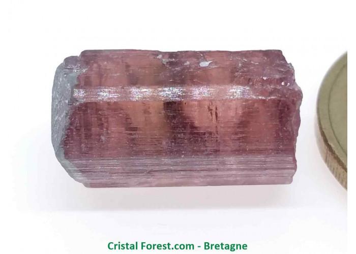 Tourmaline Melon d'eau Rose / Verte  - Pierre Brute Gemme cristallisée - 1,8 x 1 x 1cm / 3,98gr