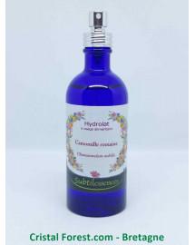 Hydrolat Camomille Romaine - Anthemis nobilis (eau florale)
