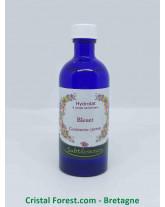 Hydrolat Bleuet - Centaurea cyanus (eau florale)