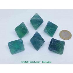 Fluorite (Fluorine) Bicolore - Octaèdre Pierre Brute