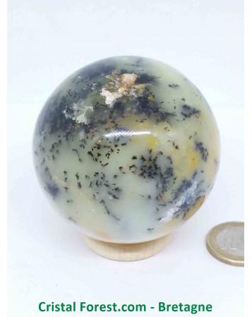 Agate Dentrite (dendritique) - Sphères