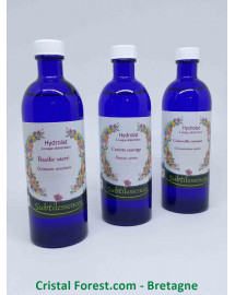 Cure Anti-stress - Eaux Florales (hydrolats) - Basilic sacré, Carotte sauvage et Camomille Romaine