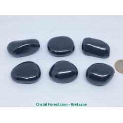 Shungite - Pierres roulées de protection