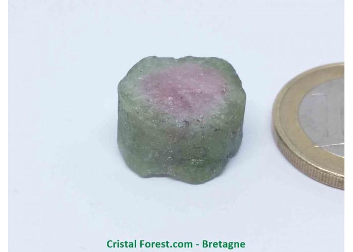 Tourmaline melon d'eau - Cristaux naturels Bruts & Gemmes  - 1,6 x 1,3 x 0,9 cm / 3,90gr