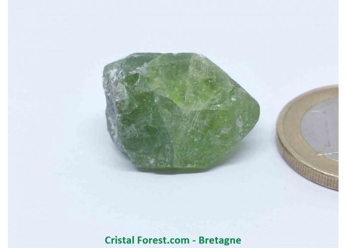 Péridot (Chrysolite) - Cristaux naturels Bruts - 1,5 x 2,2 x 1,7 cm / 9,40gr
