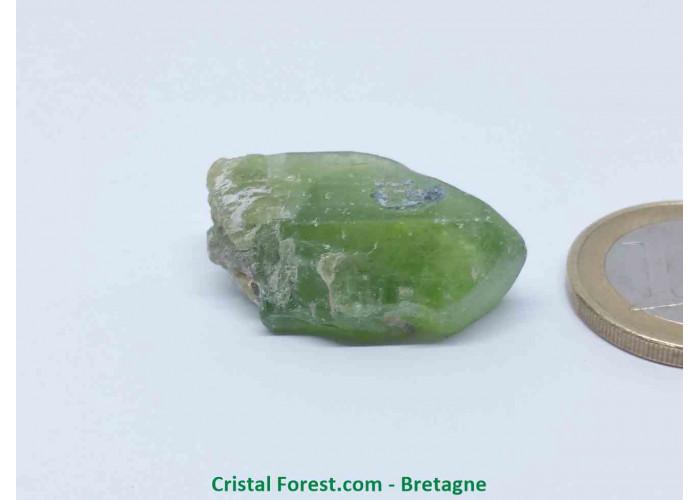 Péridot (Chrysolite) - Cristaux naturels Bruts - 2,9 x 1,8 x 1,1 cm / 9,50gr