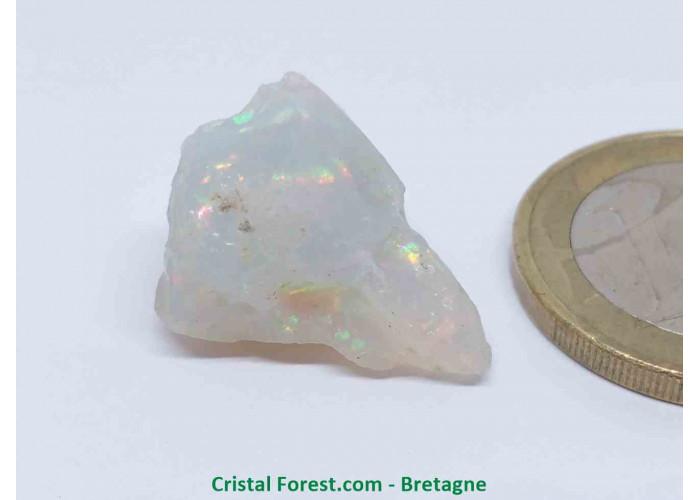Opale Noble - Pierre Brute extra