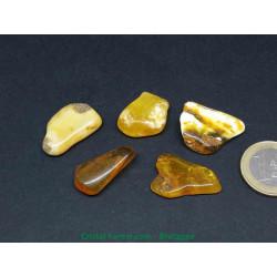 Ambre véritable - pierres roulées