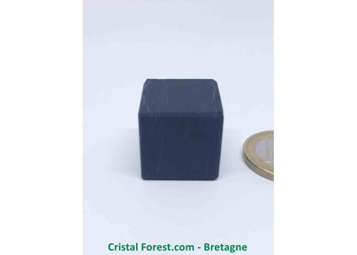 Shungite - Cube 2cm non poli