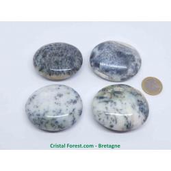 Agate Dentrite (dendritique) AA - Galets