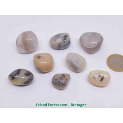 Opale mousse (Merlinite) - Pierres roulées - 2,5-3cm