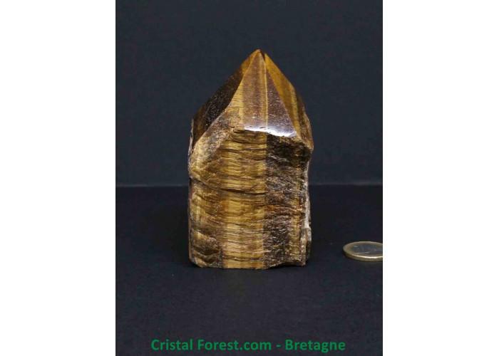 Oeil de tigre - Pointe semie brute - 9.4 x 5.3 x 5cm / 441,00gr
