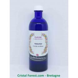 Hydrolat Noisetier - Corylus Avellana (eau florale)