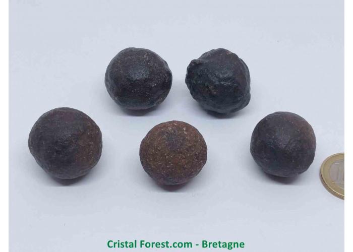 Moquis balls - Polarité positive (Masculins) - 2.5 à 2.8cm / env 22gr