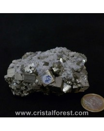 Druse (amas)  Pyrite de fer 8cm