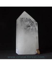 """Cristal de roche """"Maître""""  18 cm - 1,82 kg"""