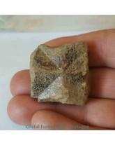 Staurodite (pierre de croix) - R2736