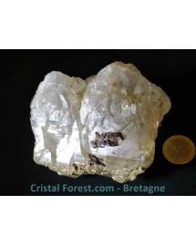 Sidérite sur gangue de quartz