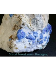 Afghanite sur gangue de quartz