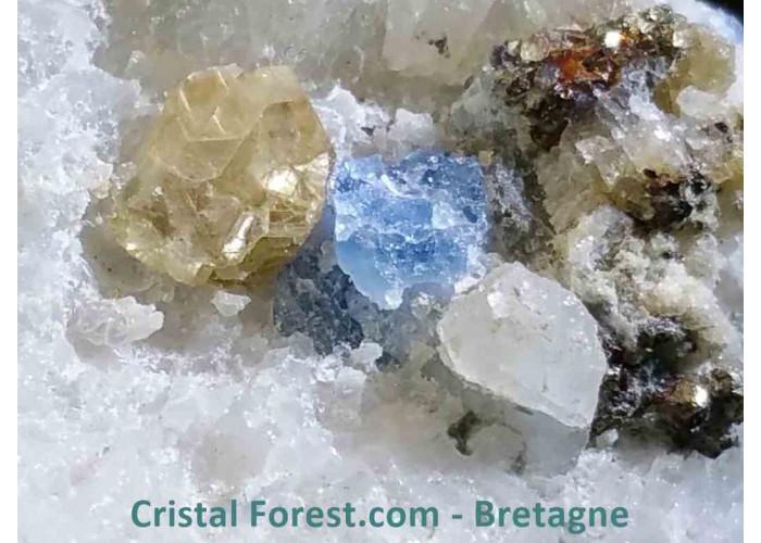 Afghanite sur gangue de quartz