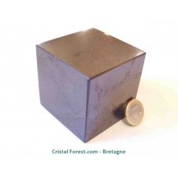 Cube de Shungite 6cm