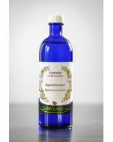Hydrolat Agastache anisée - Agastache foeniculum (eau florale)