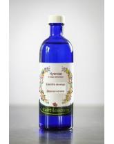Hydrolat Carotte sauvage - Daucus carota (eau florale)