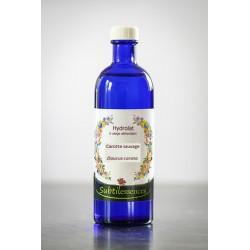 Hydrolat Carotte sauvage-Daucus carota (eau florale)